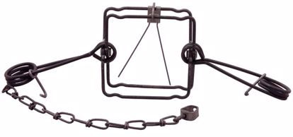 Picture of TRAP- #552 BODY W/ TWO SPRINGS